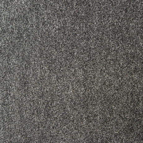 Zion (gray/silver)